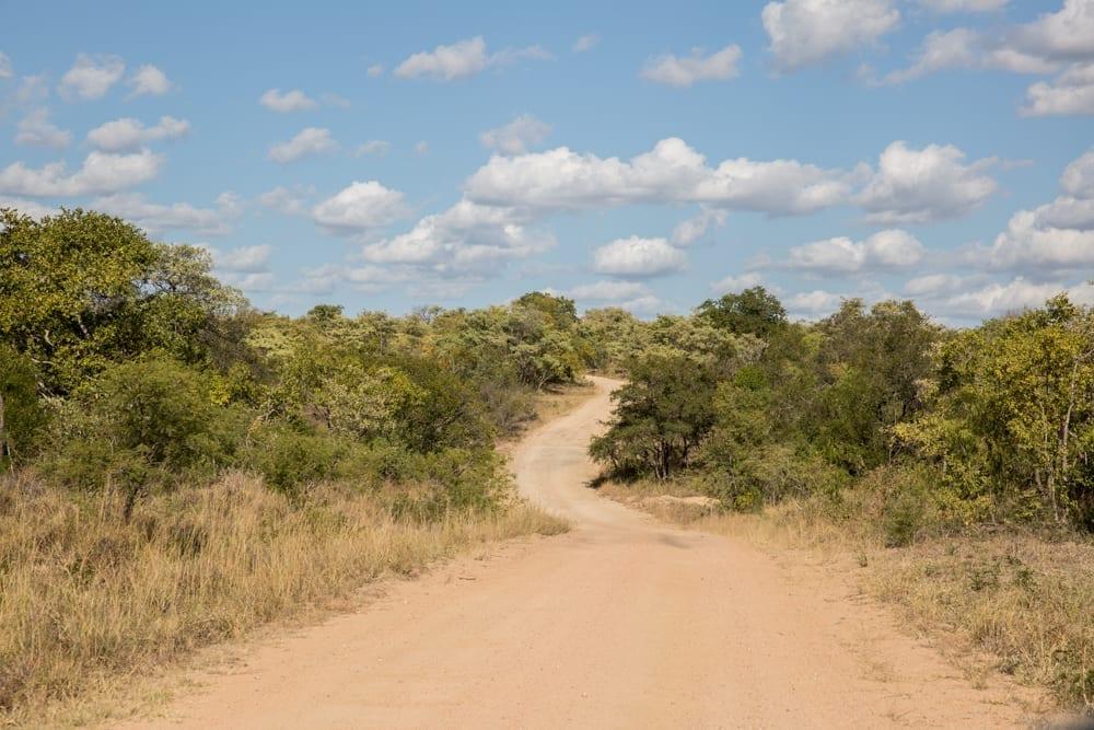 Kruger National Park-16