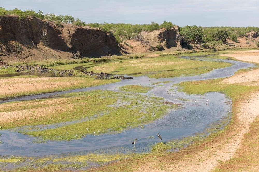 Kruger National Park-33