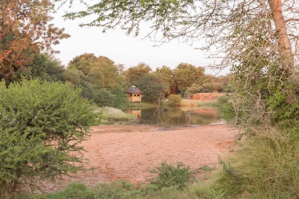 Hoedspruit Wildlife Estate-5