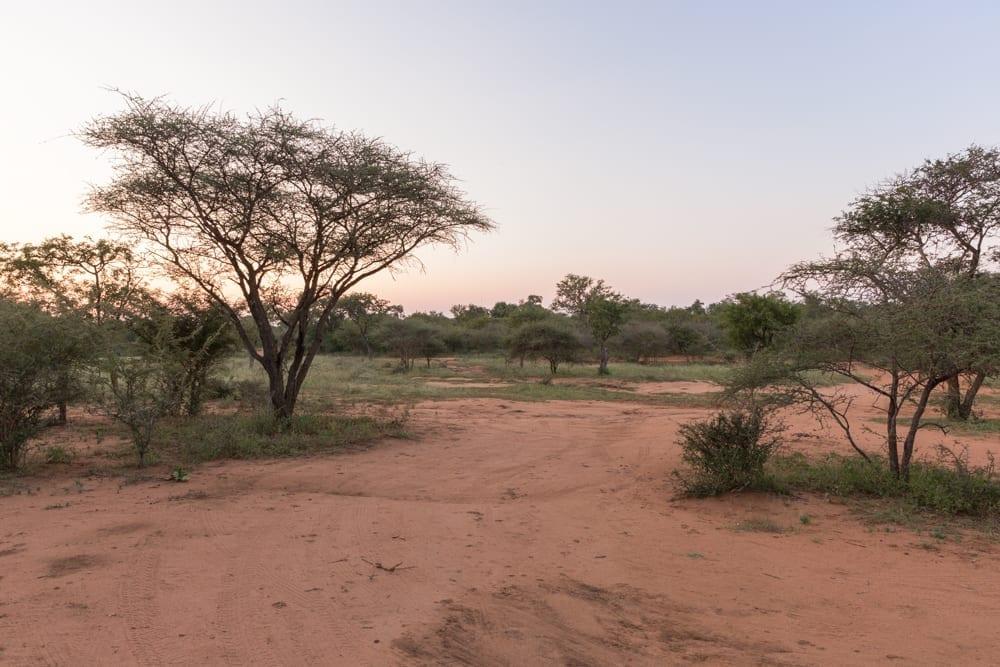 Hoedspruit Wildlife Estate-6