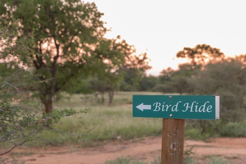 Hoedspruit Wildlife Estate-8